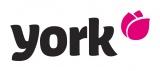 York-online.cz